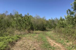 32 AC River Road  in Burke, NC (35 of 73)