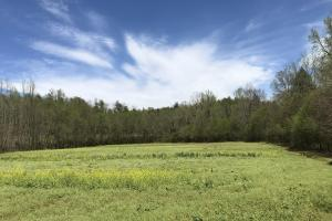 32 AC River Road  in Burke, NC (30 of 73)