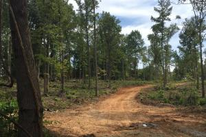 Lancaster Investment Tract with Development Potential in Lancaster, SC (4 of 24)