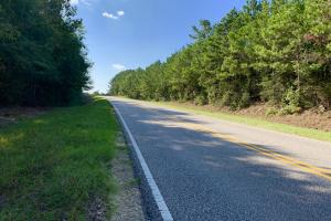 Highway 84 Zacchini Road Timber & Recreational Tract in Covington, AL (6 of 10)