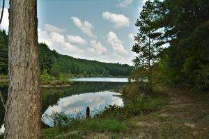 Crisstown Lake Recreation and Development Tract in Tuscaloosa, AL (13 of 21)