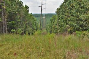 Crisstown Lake Recreation and Development Tract in Tuscaloosa, AL (21 of 21)