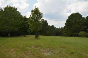 Crisstown Lake Recreation and Development Tract in Tuscaloosa, AL (20 of 21)