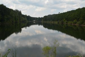 Crisstown Lake Recreation and Development Tract in Tuscaloosa, AL (14 of 21)