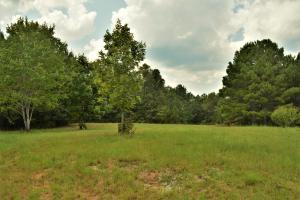 Crisstown Lake Recreation and Development Tract in Tuscaloosa, AL (18 of 21)