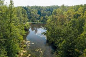 Wooded Acreage and Pond in Western Rowan County - Rowan County NC
