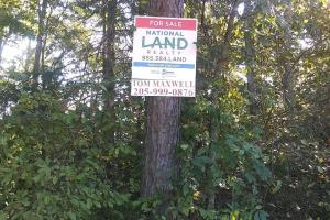 Sipsey Fork/Smith Lake Lot 1A