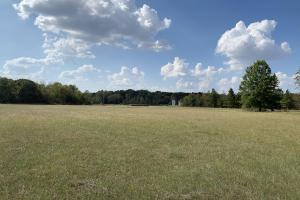 Beautiful Pasture Land With Timber - Franklin Parish LA