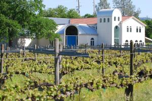 Beautiful Winery and Vineyard - Butte County CA