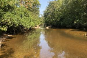 Homesite with Pond on  Black Creek  - Forrest County MS