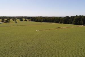 Fremont Farmland & Development Opportunity  - Wayne County NC