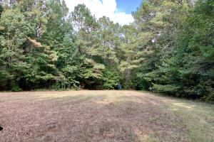 Pine Hill Above Average Timber & Hunting Investment in Wilcox, AL (10 of 27)