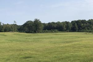 Pristine Pasture Land - Carroll County MS