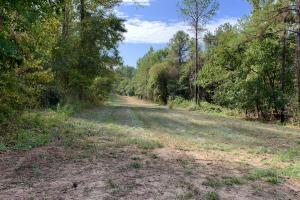 Mulberry Creek Hunting and Timber Tract in Autauga, AL (16 of 39)
