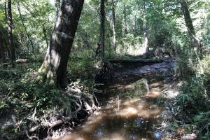 Mill Creek Hunting or Homesite in Bullock County - Bullock County AL