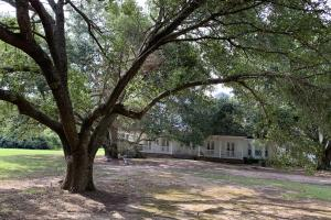 Gorgeous Home in Live Oak Setting - Franklin Parish LA