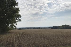 Land for Sale in Indiana
