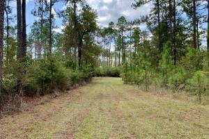 Cotton Creek Big Timber and Hunting Investment (7 of 25)