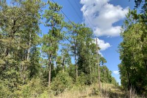Cotton Creek Big Timber and Hunting Investment (16 of 25)