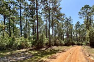 Cotton Creek Big Timber and Hunting Investment (18 of 25)
