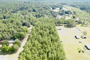 County Rd 65  14 Acre Home Site  in Baldwin, AL (2 of 3)