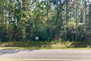 County Rd 65  14 Acre Home Site  - Baldwin County AL