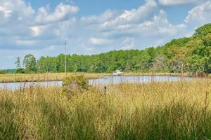 Broad Creek Timber Tract - Pamlico County NC