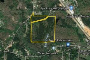 50 Acres Mature Timberland Carrollton - Carroll County GA