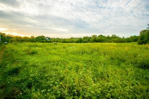 Country Homesite on Wellman Road -  County KS