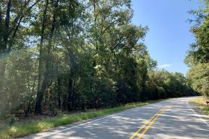 Tensaw Homesite & Hunting Retreat - Baldwin County AL