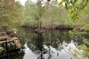 NE Cape Fear Riverfront Hunting Camp with Cabin - Pender County NC