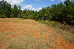 Ivy Creek East Tract in Autauga, AL (18 of 22)