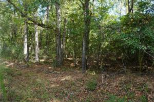Ivy Creek East Tract in Autauga, AL (5 of 22)