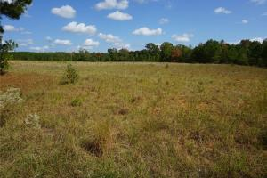 Ivy Creek East Tract in Autauga, AL (11 of 22)