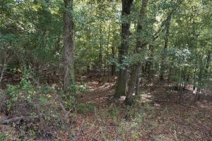 Ivy Creek East Tract in Autauga, AL (2 of 22)