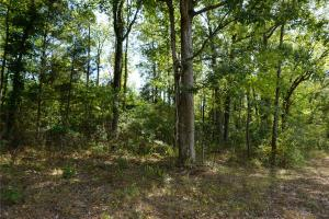 Ivy Creek East Tract in Autauga, AL (8 of 22)