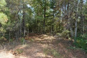 Ivy Creek East Tract in Autauga, AL (13 of 22)
