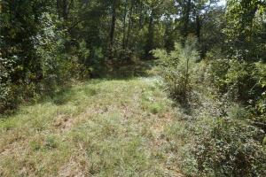 Ivy Creek East Tract in Autauga, AL (14 of 22)