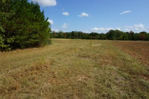 Ivy Creek East Tract in Autauga, AL (16 of 22)
