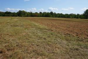 Autaugaville Hunting and Timber Tract - Autauga County AL