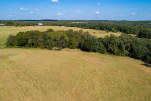 46 +/- acres Cattle tract, Rolling Terrain, Pond, Scenic views near Tara Winery - Henderson County TX