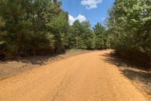 Hunting and Recreational Timberland Near Kosciusko, MS - Attala County MS