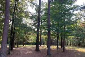 Christian Retreat with Land in Attala County, MS (58 of 64)