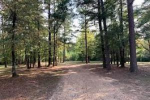 Christian Retreat with Land in Attala County, MS (56 of 64)