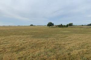 5 +/-  Acres North of Mabank, Road Frontage, Great home site - Van Zandt County TX