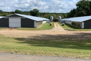 Chicken Farm Near Lake MS - Scott County MS