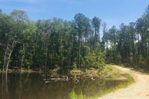 Shivers Green Homesite with Pond in Kershaw, SC (16 of 17)