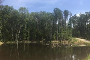 Shivers Green Homesite with Pond in Kershaw, SC (2 of 17)