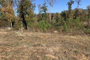 6 Acre Building Lot - Henderson County TN