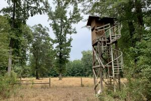 Putnam Hardwood Hunting & Timber Investment - Marengo County AL